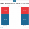 china-mobile-internet-users-by-gender-group